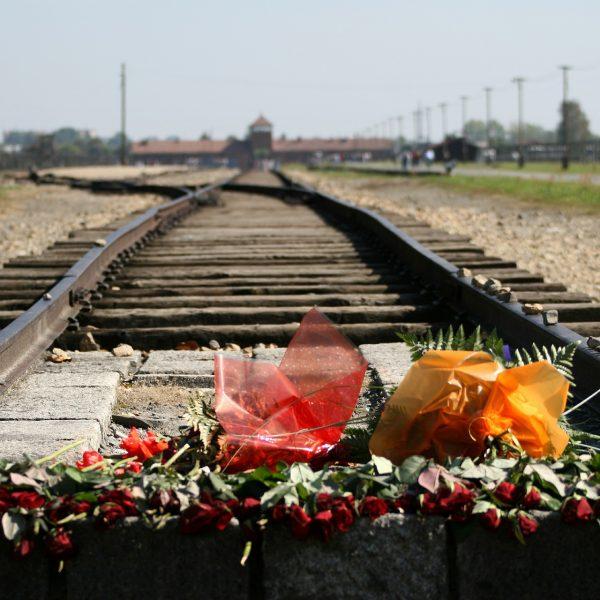 [A/L] Voyage d'histoire et de mémoire en Pologne